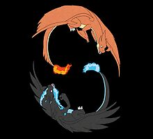 Mega Charizard Y and X by BarbaraJHarris