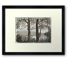 Smith's Lake Trees Framed Print