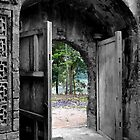 Beyond the door by Paige