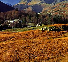 Langdale Pikes Lake District by Nick Jenkins