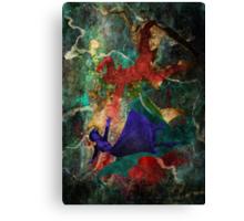 Bioshock Infinite Falling Canvas Print