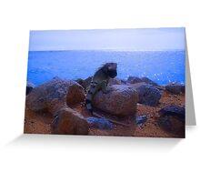 """Aruba Iguana"" by Carter L. Shepard Greeting Card"