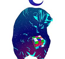 Rubik's Cube Cat by summerath