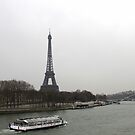 Eiffel Tower along River Seine by magiceye