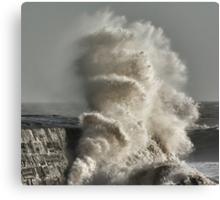 January Storm 2 Canvas Print