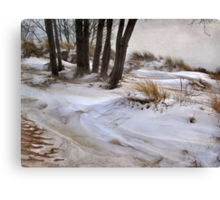 Blending Sand and Snow Canvas Print