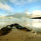 Harlyn Bay - Cornwall by Samantha Higgs
