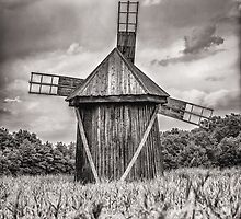 Wind mill by Dobromir Dobrinov