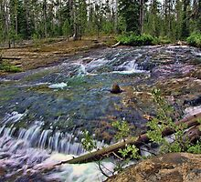 Cascade Creek V by Brenton Cooper