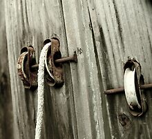 pulley, rope, and nails by Shellyrew
