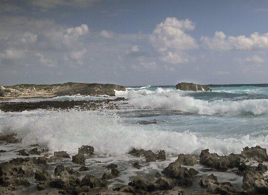 El Mirador, Cozumel by John  Kapusta