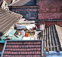 Up on the Rooftop-Shanghai by Deborah Downes