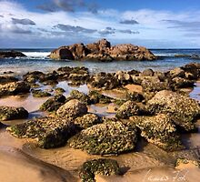 Anna Bay, NSW 09.01.14 by James Toh