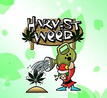 Harvest Moon/Weed by RawanAlsebaie
