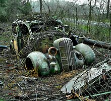 Free Parking ~ Old Cars ~ by Charles & Patricia   Harkins ~ Picture Oregon