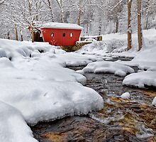 Winter Stream  by Bill Wakeley