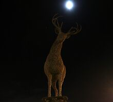If the moon's a balloon, watch out for my horns ! by ElsT
