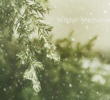 Winter Memories II by afeimages