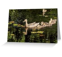 Ducklings family Greeting Card