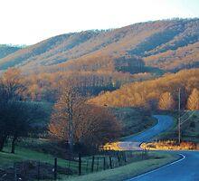 Virgina Hills by Cynthia48