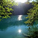 Plitvice National Park by Andrew Taylor