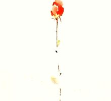 TRANDITIONAL CHINESE PAINTING-FLOWER2 by deviloblivious