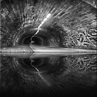 Light at the end of the Tunnel by snowy5