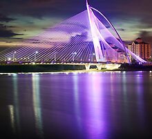 Seri Wawasan Bridge reflection by Guy  Berresford
