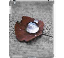 Droplette iPad Case/Skin