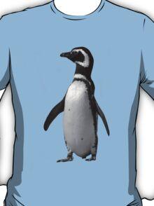Magellanic Penguin, Falkland Islands T-Shirt