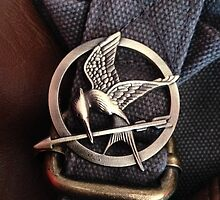 Mockingjay by andygd