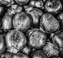 Onion by Dobromir Dobrinov