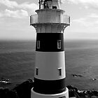 Cape Palliser Lighthouse New Zealand by M. van Oostrum