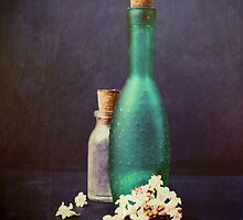 Glass bottles with petals of a winter blossom by Sybille Sterk