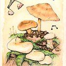 Mushroom Music by Bart Castle