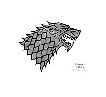 Game of Thrones - House Stark  Photographic Print