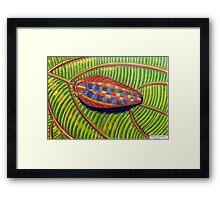 398 - MULTICOLOURED COCKROACH - DAVE EDWARDS - COLOURED PENCILS - 2014 Framed Print