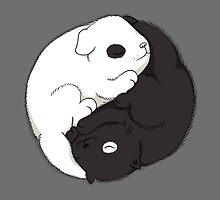 Yin & Yang by Lili Batista