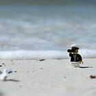 Sea Captain - Bird Watching at the Beach by emmkaycee
