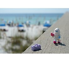 Yeti - Strolling on the Boardwalk Photographic Print