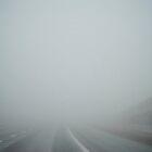 through the fog.  by Elizabeth Somerville