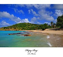 Happy Bay St. Martin by William  Israelson