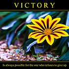 Victory Possible by Webitect