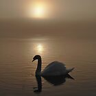 Swan Lake in the Mist by David Alexander Elder