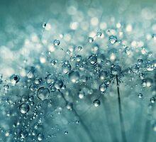 Twinkle in Blue by Sharon Johnstone