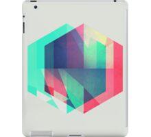 hyx^gyn iPad Case/Skin
