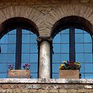 A window in Rome by Sandro Rossi