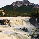 Athabasca Falls by Cameron B
