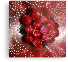 Fresh red radishes in a colander Metal Print