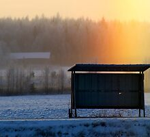 15.1.2014: Bus Stop and Halo by Petri Volanen